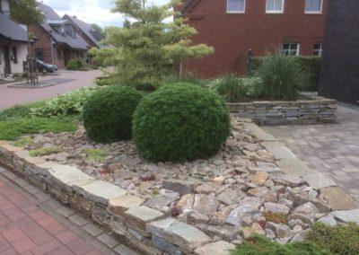 Bepflanzung Vorgarten