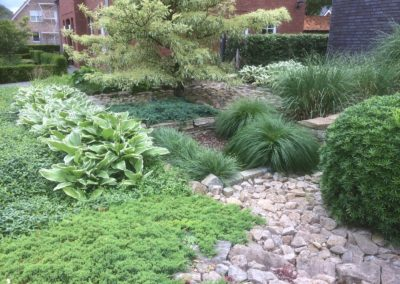 Grünanlage im Vorgarten