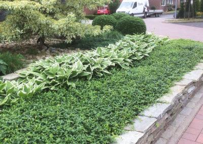 Bepflanzung Grünstreifen Wohngebiet